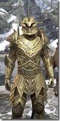 Auroran Knight Argonian Male Close Front