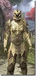 Auroran Knight Khajiit Female Close Front