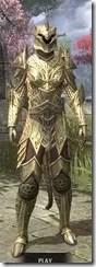 Auroran Knight Khajiit Female Front