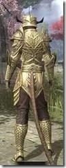 Auroran Knight Khajiit Female Rear