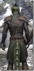 Austere Warden - Argonian Male Close Rear