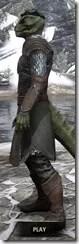 Austere Warden - Argonian Male Side