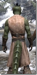 Blacksmith - Argonian Male Close Rear