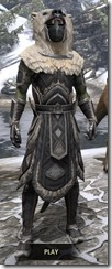 Cavalier of the Sworn Oath - Argonian Male Front
