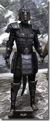 Centurion Field Armor - Argonian Male Front