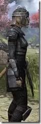 Centurion Field Armor - Khajiit Female Close Side