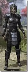 Centurion Field Armor - Khajiit Female Front