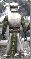 Chef - Argonian Male Close Rear