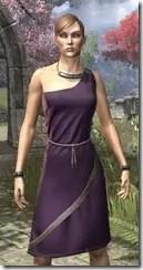 City Isle Tunic Dress Dyed Close Front