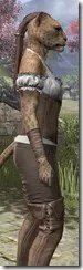 Corseted Riding Outfit - Khajiit Female Close Side