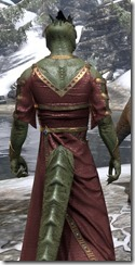Cyrod Patrician Formal Gown - Argonian Male Close Rear