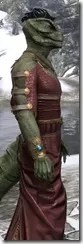 Cyrod Patrician Formal Gown - Argonian Male Close Side