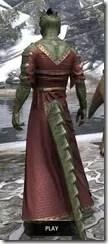 Cyrod Patrician Formal Gown - Argonian Male Rear