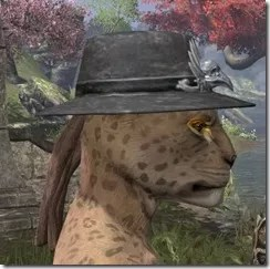 Deluxe Mourning Hat Khajiit Female Side