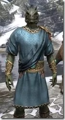 Elder Council Tunic and Sash - Argonian Male Close Front
