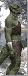 Graht-Climber's Active Wear - Argonian Male Close Side