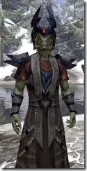 Lich Light - Argonian Male Robe Close Front