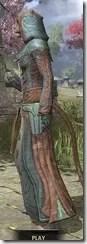Mages Guild Formal Robes - Khajiit Female Side