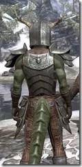 Nedic Perena Armor - Argonian Male Close Rear