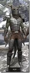 Nedic Perena Armor - Argonian Male Front
