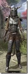 Nedic Perena Armor - Khajiit Female Front