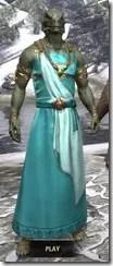 Nibenese Noble's Shawled Robe Argonian Male Front