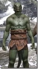 Nordic Bather's Towel Argonian Male Close Front
