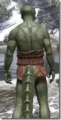 Nordic Bather's Towel Argonian Male Close Rear