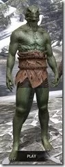 Nordic Bather's Towel Argonian Male Front