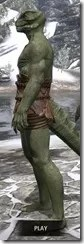Nordic Bather's Towel Argonian Male Side