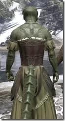 Off-the-Shoulder Evening Dress - Argonian Male Close Rear