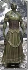 Off-the-Shoulder Evening Dress - Argonian Male Front