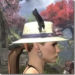 Plumed Mourning Hat Dyed Side