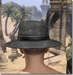 Plumed Mourning Hat Male Rear