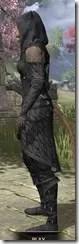 Queen's Eye Spymaster - Khajiit Female Side
