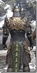 Renegade Dragon Priest Argonian Male Close Rear