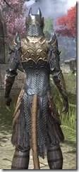 Renegade Dragon Priest Khajiit Female Close Rear