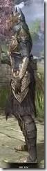 Renegade Dragon Priest Khajiit Female Side