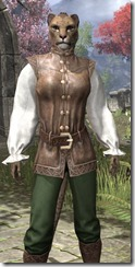 Soiree in Camlorn Evening Outfit - Khajiit Female Close Front