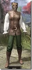Soiree in Camlorn Evening Outfit - Khajiit Female Front