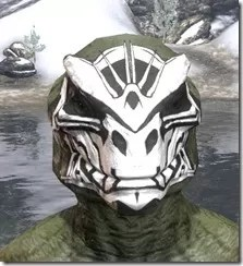 Spoked Skull Face Tattoo Argonian Male Front