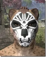 Spoked Skull Face Tattoo Khajiit Female Front