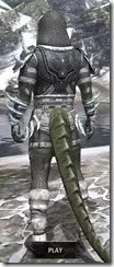 Stahlrim Frostcaster Iron - Argonian Male Rear