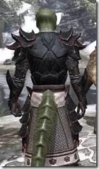 Telvanni Master Wizard - Argonian Male Close Rear