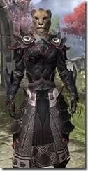 Telvanni Master Wizard - Khajiit Female Close Front