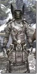 Winterborn Shaman's Costume - Argonian Male Close Front