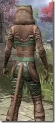 Wood Elf Vanguard - Khajiit Female Close Rear