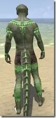 Bright-Throat Algae Body Tattoo Argonian Male Rear
