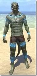 Bright-Throat Woad Body Tattoo Argonian Male Front