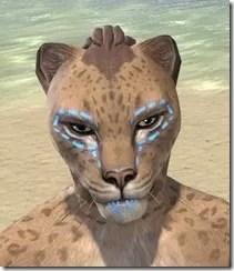 Bright-Throat Woad Face Tattoo Khajiit Female Front